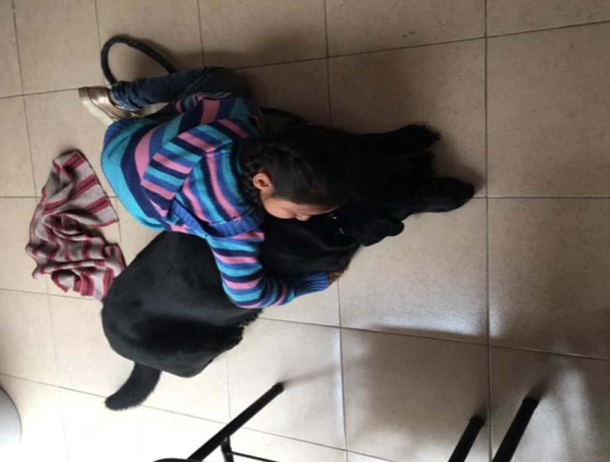 Terapia Canina TAP